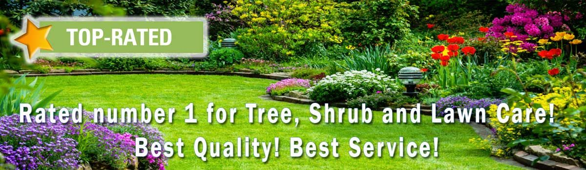 Go to: Environmmental Tree and Shrub Care