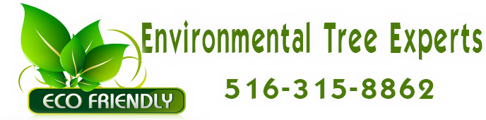 Environmental Tree Experts